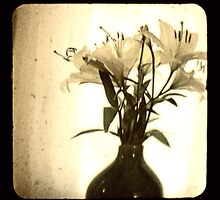 the flowers that patrik gave to me by Shannon Byous Ruddy