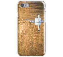 Golden Danube iPhone Case/Skin