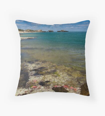 Life On the Reef 2 Throw Pillow