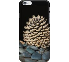 Lonely Pine Cone  iPhone Case/Skin