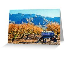 Apricots in the Fall Greeting Card