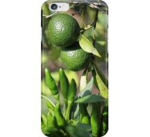 chili and orange in the garden iPhone Case/Skin