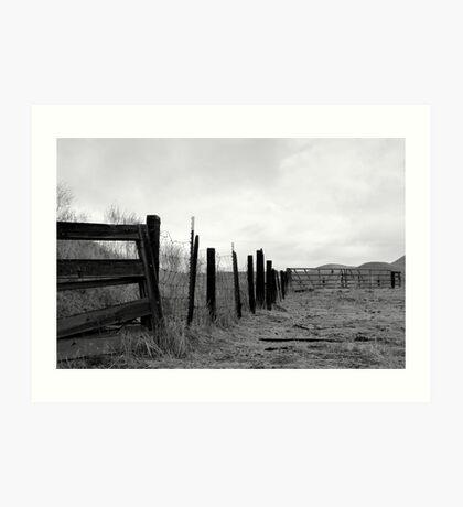 bull fence Art Print