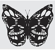 The Skulled Butterfly Photographic Print