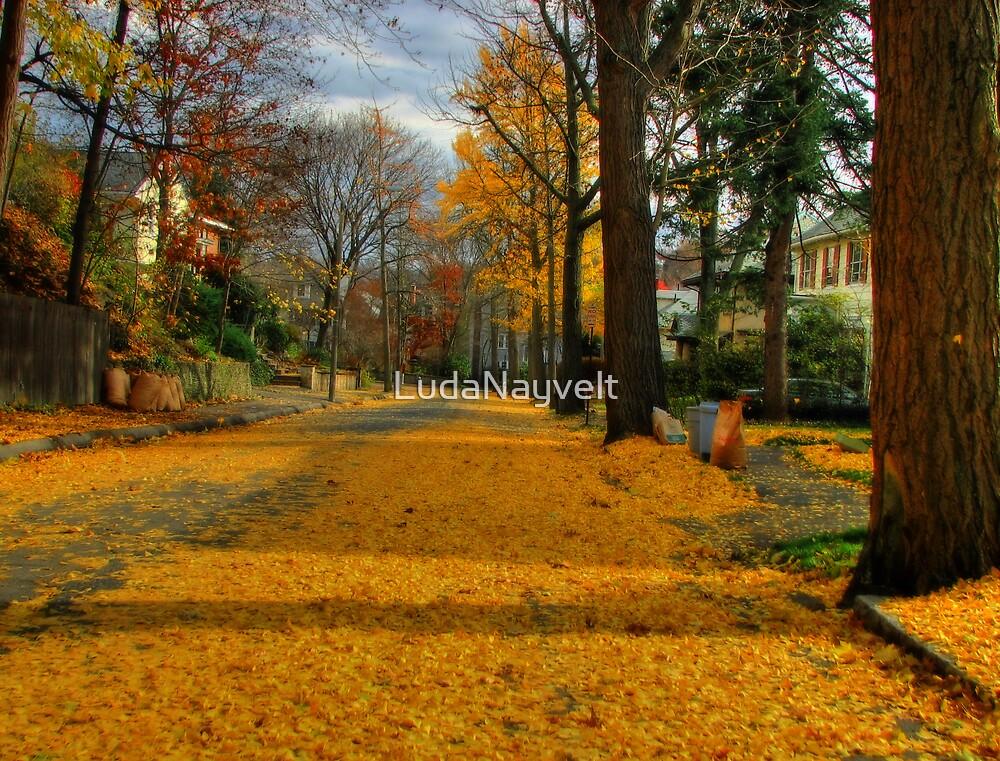 Golden road by LudaNayvelt