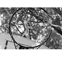 Old Hoops Photographic Print