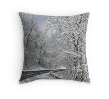 Sudden Winter Throw Pillow
