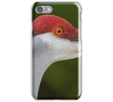 Tiny Red Feathers iPhone Case/Skin