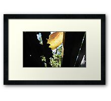 Windows to nature 1 Framed Print
