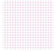 Pink Grid Photographic Print