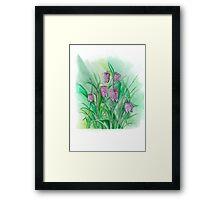 Spring Flowers Snakes Head Fritillary Framed Print