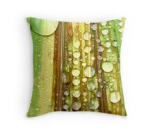 Shower Curtain Throw Pillow