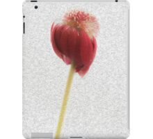 Fading Beauty iPad Case/Skin