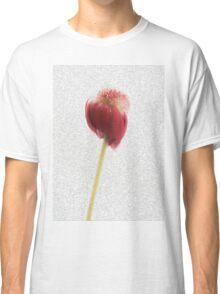 Fading Beauty Classic T-Shirt