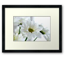 Glowing white Daisies Framed Print