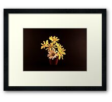 White and Yellow Daisies in a Red Pot Framed Print