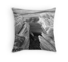 aged wood Throw Pillow