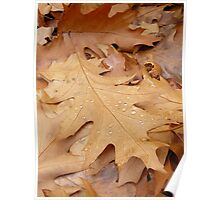 Autumn... Poster