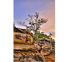 Reach For The Sky - Balmoral Beach - The HDR Series Photographic Print