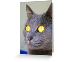 The Hunt Is On! Greeting Card