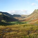 The Langdale Valley by Mike Paget