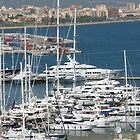 Palma Marina, Mallorca by AlvinBurt