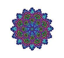 Bluemungus mandala Photographic Print