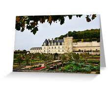Villandry Castle - Loire Valley - France Greeting Card