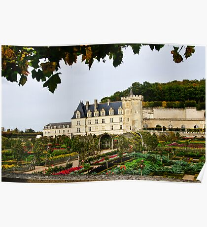 Villandry Castle - Loire Valley - France Poster
