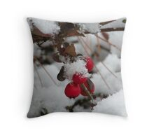 twig and berries...(not those, you sillies) Throw Pillow