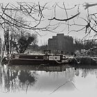 River Stort, Harlow by Nigel Bangert
