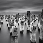 Princes Pier, Port Melbourne by Vicki Moritz