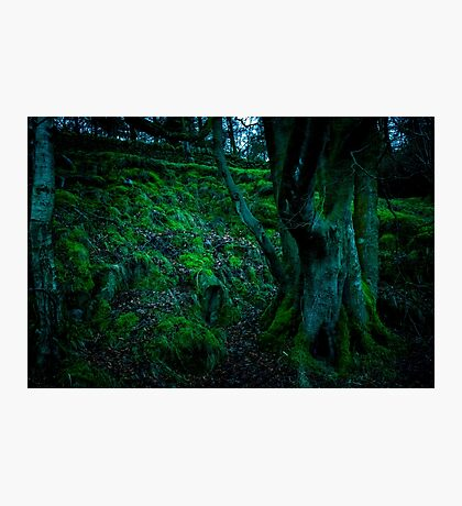 Mossy Hill Photographic Print