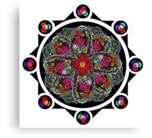 8 Rose Window Canvas Print