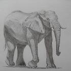 Desert Elephant by stevetg101