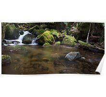Taggerty River Cascades Poster