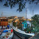 The House Boat by Nigel Bangert