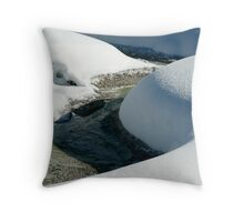 Snow Sculpture Throw Pillow