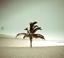 November Beach by gregneedham