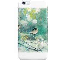 Winter Birds iPhone Case/Skin