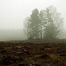 My land 3 by Antanas