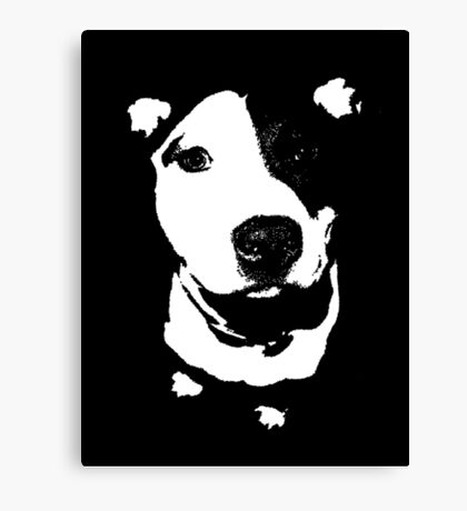 Louie - Black and white pit bull Canvas Print