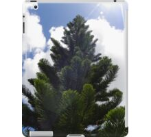 Portfolio: Captain Cook pine and sun flare, Hilo, Big Island iPad Case/Skin