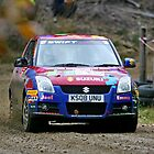 Tempest Rally Suzuki Swift by Mark Greenwood