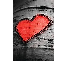 Heart of Life Photographic Print