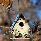 Country Birdhouse by Pamela Hubbard