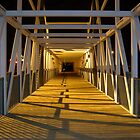 Bridge at Night by Evan Johnson