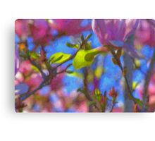 Magnolias in Oil Canvas Print