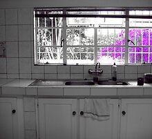 Swazi Kitchen by Nikolena Parker