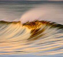 Golden Wave Crest by David Orias